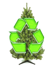 Where to recycle your Christmas tree | West Philly Local